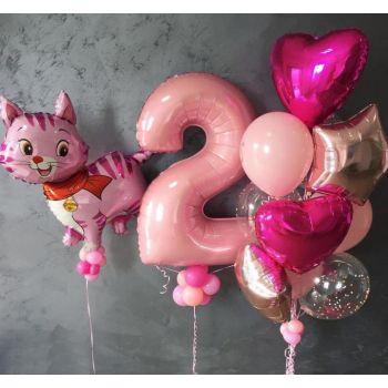 Набор шаров с кошечкой девочке 2 года