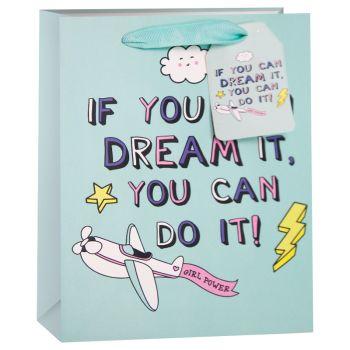 Пакет подарочный, Мечты сбываются (самолетик), Бирюзовый, 23*18*10 см, 1 шт.